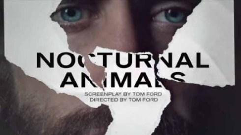 nocturnal-animals