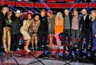 the-voice-season-11-top-12-artists