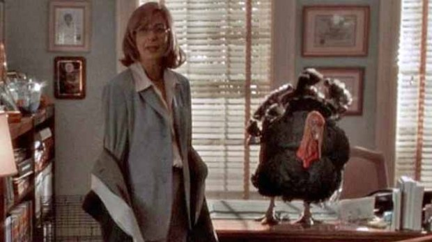 thanksgiving-episodes-the-west-wing-shibboleth