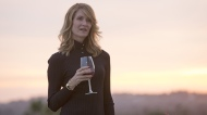 big little lies cast photos Laura Dern