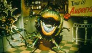 Bill-Murray-Movies-ranked-Little-Shop-of-Horrors