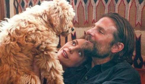 A Star Is Born Lady Gaga Bradley Cooper