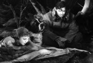 Clark-Gable-Movies-Ranked-Call-of-the-Wild