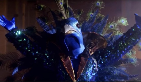 The-Masked-Singer-Peacock