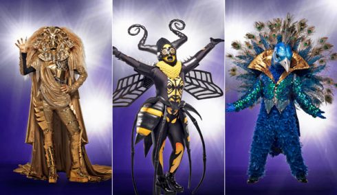 the-masked-singer-lion-bee-peacock