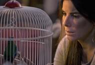 Sandra Bullock in Bird Box