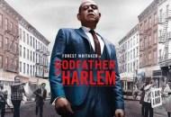 Godfather-of-Harlem