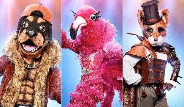 the-masked-singer-rottweiler-flamingo-fox
