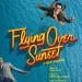 flying-over-sunset