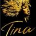 Tina-The-Tina-Turner-Musical