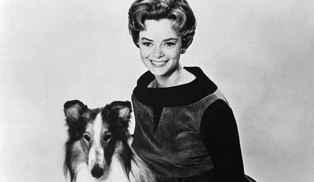 best-tv-pets-lassie