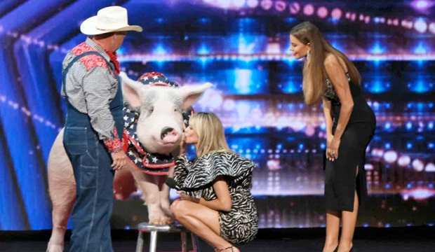 Will an animal act win 'America's Got Talent' for the first time in 8 years? Only Olate Dogs have prevailed so far