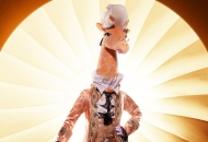 Giraffe the masked singer season 4 costumes