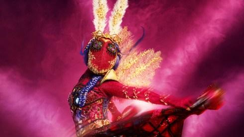 moth the masked dancer