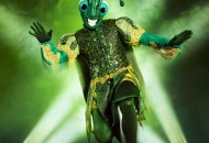 the masked dancer cricket costume
