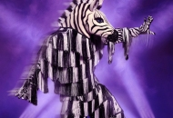 the masked dancer zebra costume
