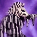 zebra the masked dancer