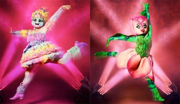 masked dancer tulip cotton candy