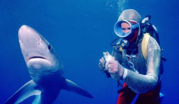 Playing with Sharks Documentary Valerie Taylor
